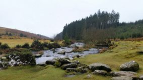 Bellever Forest, Dartmoor National Park, Devon,uK. Bellever Forest, Dartmoor National Park, Devon , where you can enjoy the tranquillity of a picnic by the East royalty free stock images