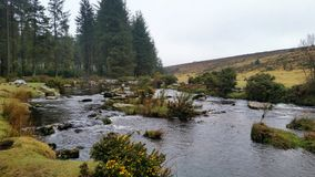 Bellever Forest, Dartmoor National Park, Devon,uK. Bellever Forest, Dartmoor National Park, Devon , where you can enjoy the tranquillity of a picnic by the East stock image