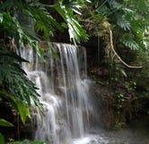 Belleza aislada de la cascada Fotografía de archivo libre de regalías