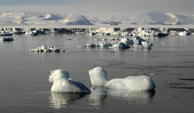 Belleza antártica Imagen de archivo libre de regalías