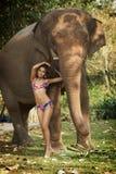 Belleza asiática en selva Imagen de archivo