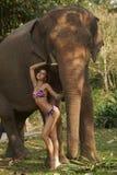 Belleza asiática en selva Imagenes de archivo