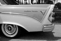 Belleza blanco y negro Fotografía de archivo