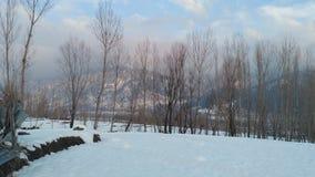 Belleza de Cachemira Imagen de archivo
