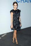 Belleza de Camila, Karl Lagerfeld Foto de archivo libre de regalías