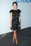 Belleza de Camila, Karl Lagerfeld Fotografía de archivo libre de regalías
