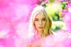 Belleza de la flor de Sakura en naturaleza Mujer sensual en la flor floreciente de Sakura en primavera Día para mujer con la much Fotografía de archivo