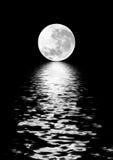 Belleza de la luna stock de ilustración