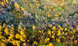 Belleza de la naturaleza en Lituania Foto de archivo