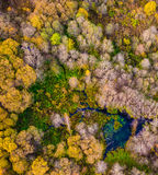 Belleza de la naturaleza en Lituania imagen de archivo libre de regalías