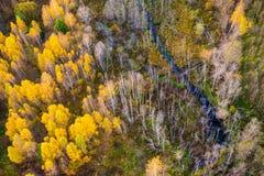 Belleza de la naturaleza en Lituania Fotografía de archivo