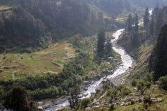 Belleza de la naturaleza de Himachal Pradesh, la India Imagen de archivo