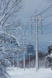 Belleza de la naturaleza de la nevada del cuento de hadas del invierno que se ocupa foto de archivo