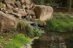 Belleza de la naturaleza Secuencia del agua Imagen de archivo libre de regalías