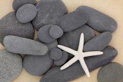 Belleza de las estrellas de mar Imagen de archivo