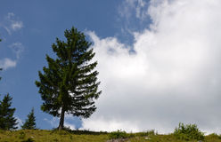 Belleza de las montañas fotografía de archivo libre de regalías