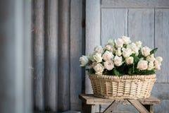 Belleza de rosas Fotografía de archivo