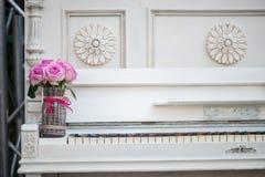 Belleza de rosas Imagen de archivo libre de regalías