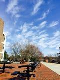 Belleza del campus Imágenes de archivo libres de regalías