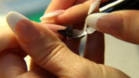 Belleza del estudio Cierre femenino de la manicura de los clavos de las manos para arriba almacen de metraje de vídeo