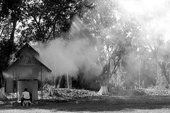 Belleza del humo Imagen de archivo libre de regalías