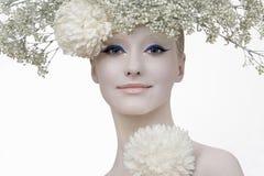 Belleza del invierno. foto de archivo libre de regalías