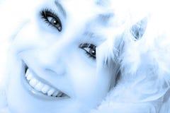 Belleza del invierno Imagenes de archivo