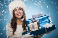 Belleza del invierno fotografía de archivo libre de regalías
