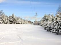 Belleza del invierno Fotografía de archivo