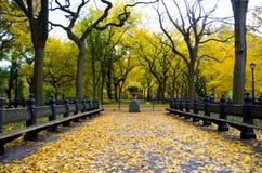 Belleza del otoño en el Central Park NYC Foto de archivo libre de regalías