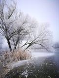 belleza del paisaje helado Fotos de archivo
