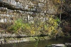 Belleza del ` s del acantilado del río en un día de la caída Foto de archivo libre de regalías