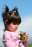 Belleza en color de rosa Imágenes de archivo libres de regalías