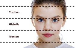 Belleza ideal Simétrico de la cara femenina de una niña imagenes de archivo
