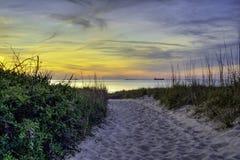 Belleza más allá de las dunas Imágenes de archivo libres de regalías