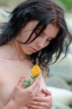 Belleza natural Foto de archivo libre de regalías
