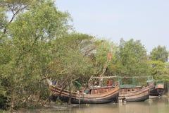 Belleza natural de la isla de Bhola Fotos de archivo libres de regalías
