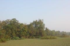 Belleza natural de la isla de Monpura Fotografía de archivo