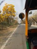 Belleza natural lateral del camino Imagenes de archivo