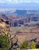 Belleza occidental de América Foto de archivo libre de regalías