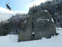 Belleza ocultada en la nieve imagenes de archivo