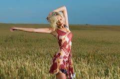 Belleza rubia en campo de trigo Foto de archivo