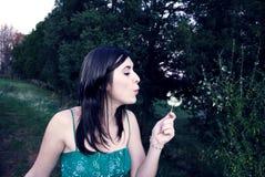 Belleza simple Foto de archivo libre de regalías