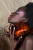 Belleza surafricana fotos de archivo