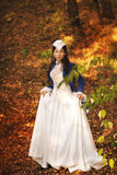 Belleza triguena magnífica en un vestido pasado de moda Imagen de archivo