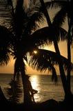 Belleza tropical fotos de archivo