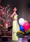 Belleza vietnamita Foto de archivo
