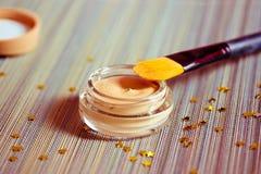 Belleza y maquillaje: producto de la fundación con el cepillo Fotografía de archivo libre de regalías