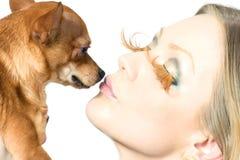 Belleza y su perro Foto de archivo