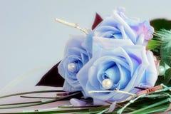 Bellezas azules Fotografía de archivo